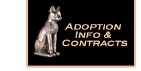 adoption info and contracts